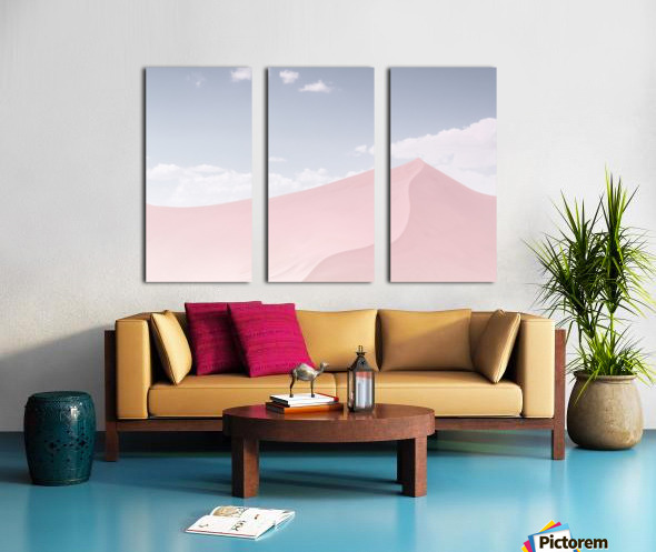 Powder Split Canvas print