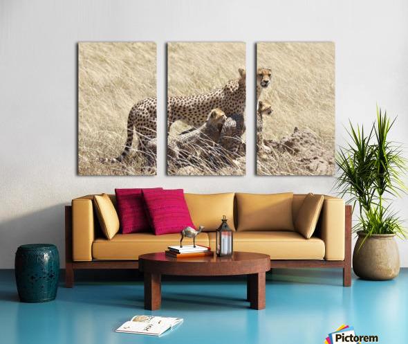 Mama Cheetah Split Canvas print