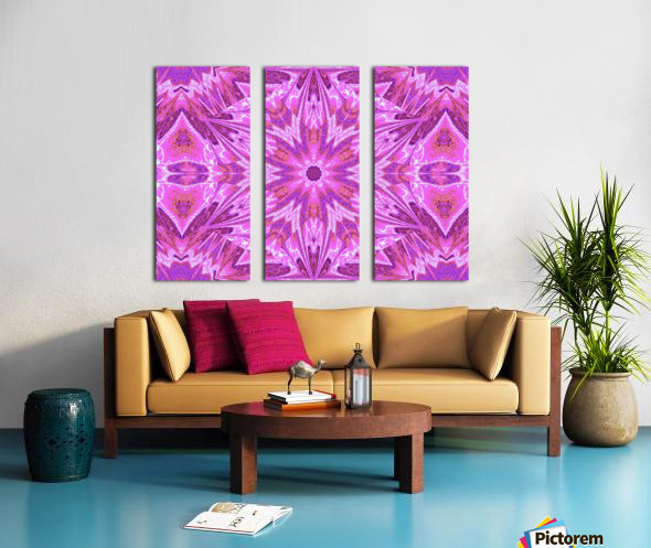 Sophornitella 25 Split Canvas print