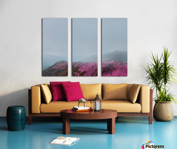 Color change Split Canvas print