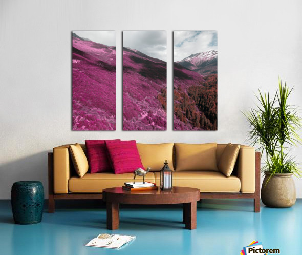 Color change Split Canvas print