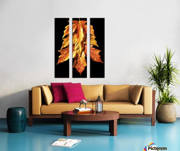 Fall Maple Leaves 1 Split Canvas print