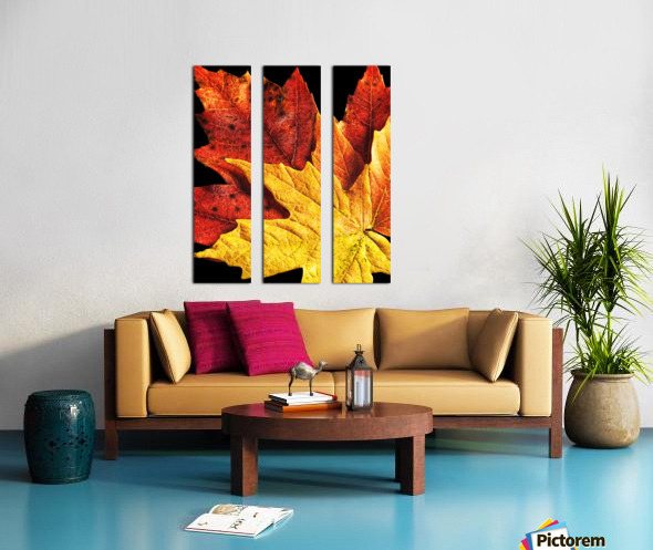 Fall Maple Leaves 2 Split Canvas print
