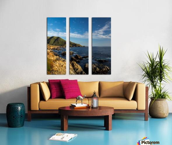 Sleeping Bear Split Canvas print
