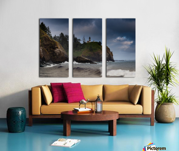 Resolute Split Canvas print