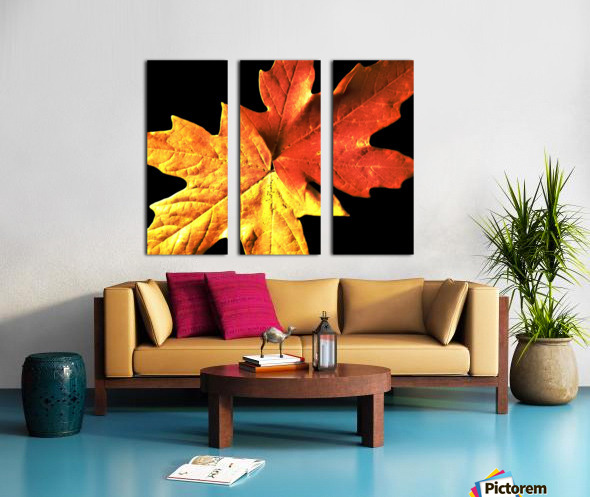 Fall Maple Leaves 3 Split Canvas print