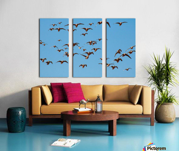 AdriaanPrinsloo 4488 Split Canvas print