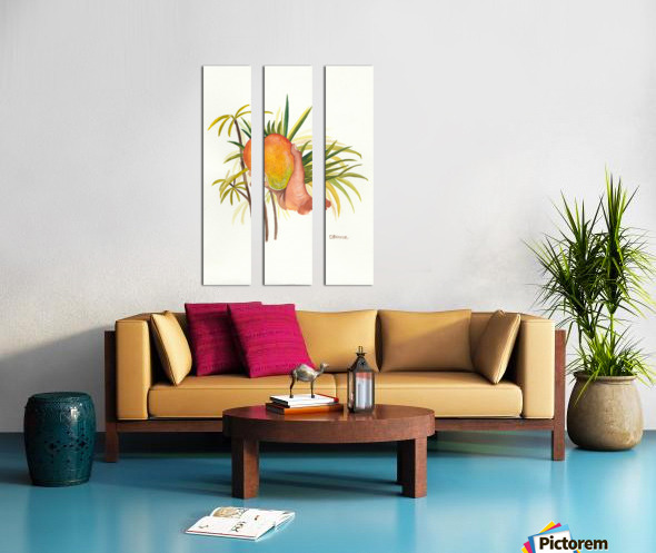 Mango Split Canvas print