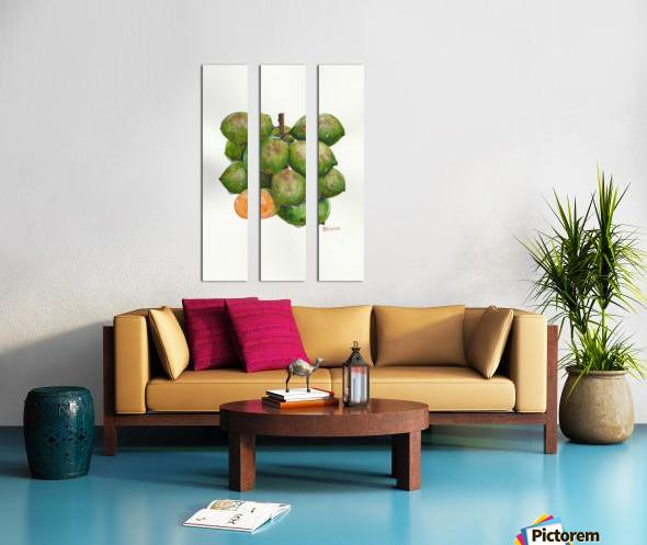 Spanish Lime Split Canvas print