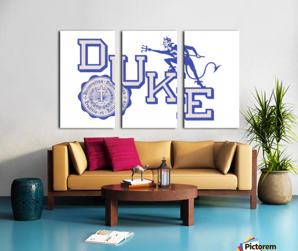 Vintage Duke University Art Split Canvas print