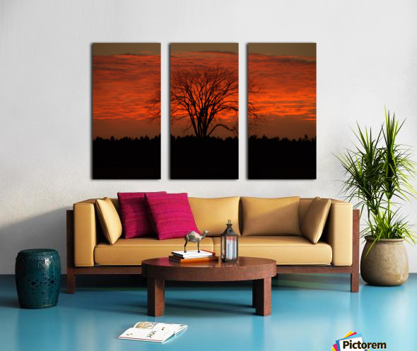 Wisconsin November Sunset Wood County Split Canvas print