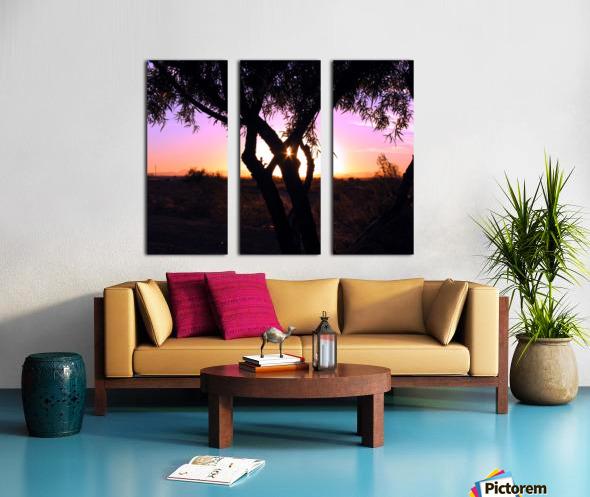 Tamarisk Sunset Split Canvas print