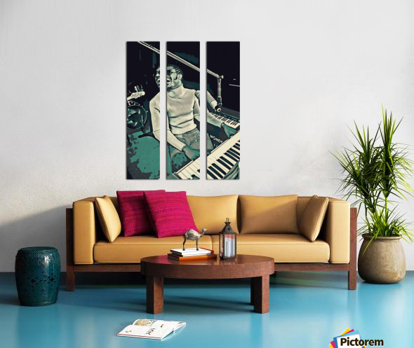 Stevie_Wonder_11 Split Canvas print
