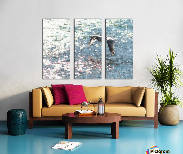 Sparkling Gull  Split Canvas print