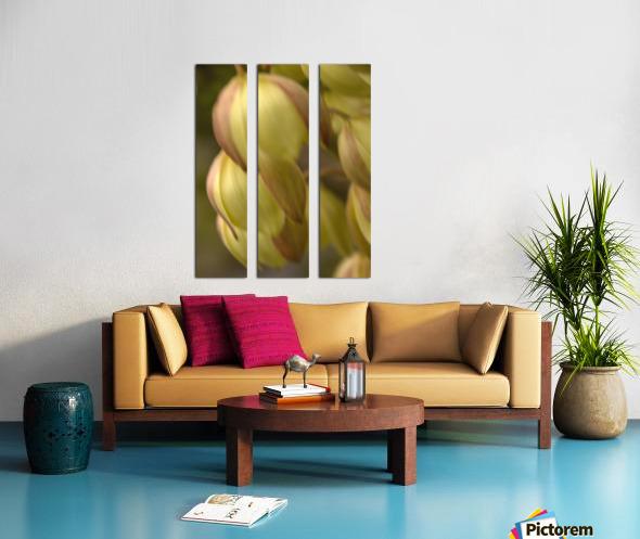 Beauty in a Gentle Breeze Split Canvas print