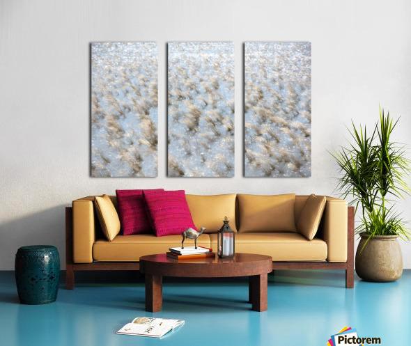Lake Grass Split Canvas print
