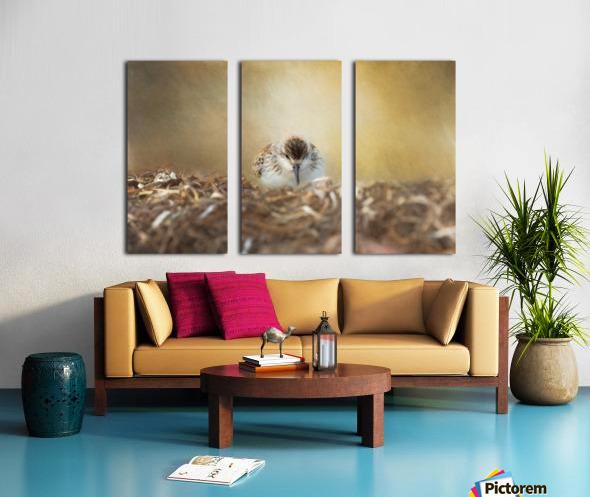 Simplicity of Nature Split Canvas print
