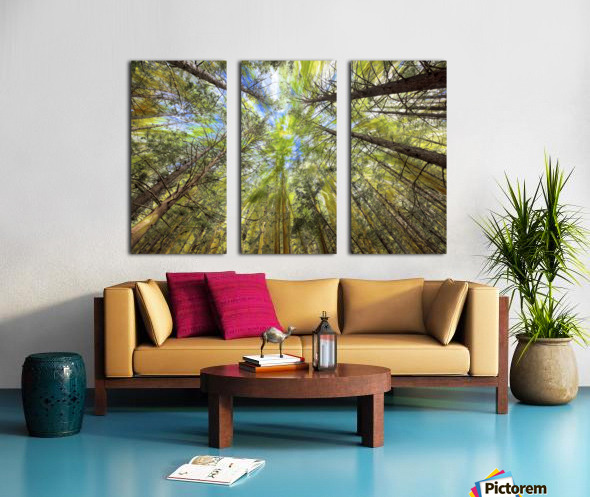 Forest Particles Split Canvas print