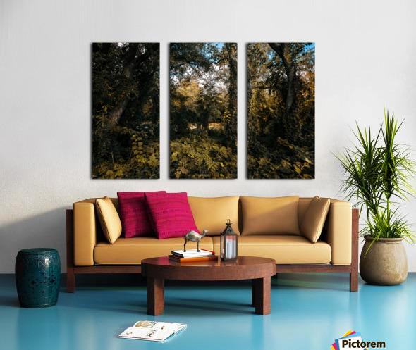 Monet style 1 Split Canvas print