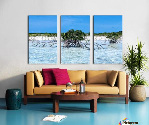 Mangroves in Estuary Split Canvas print