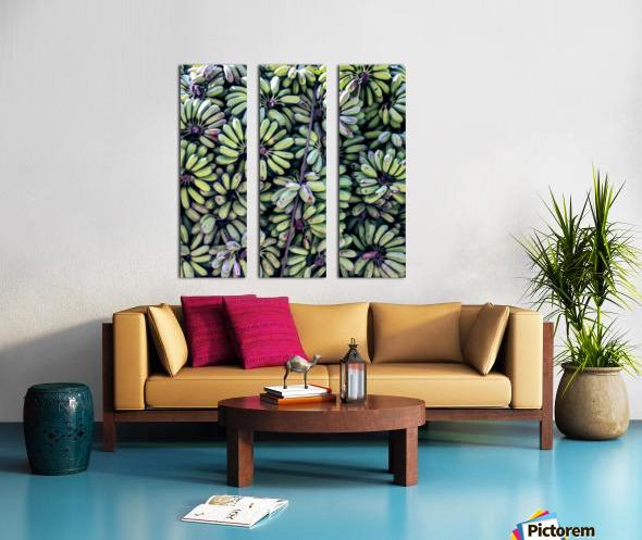 Havana III Split Canvas print