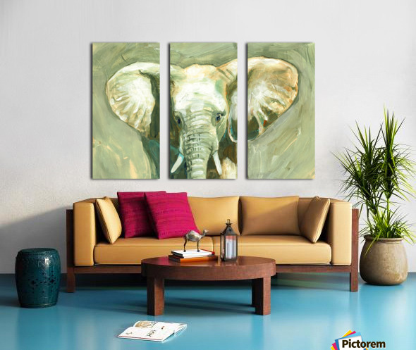 Young Elephant  Split Canvas print
