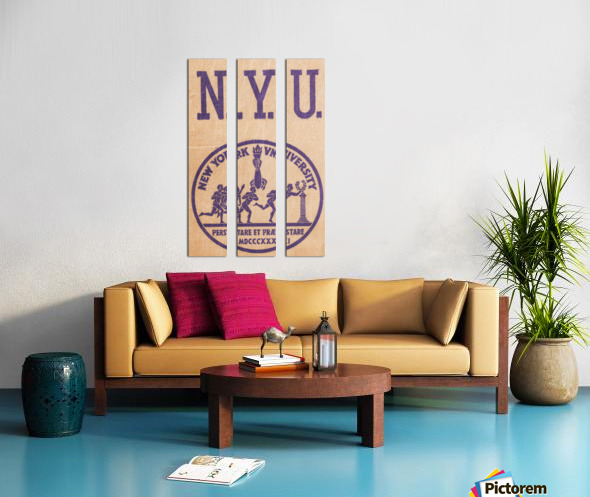 1950s NYU Art Split Canvas print