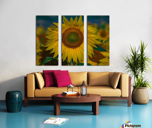 When Sunny Gets Blue Split Canvas print