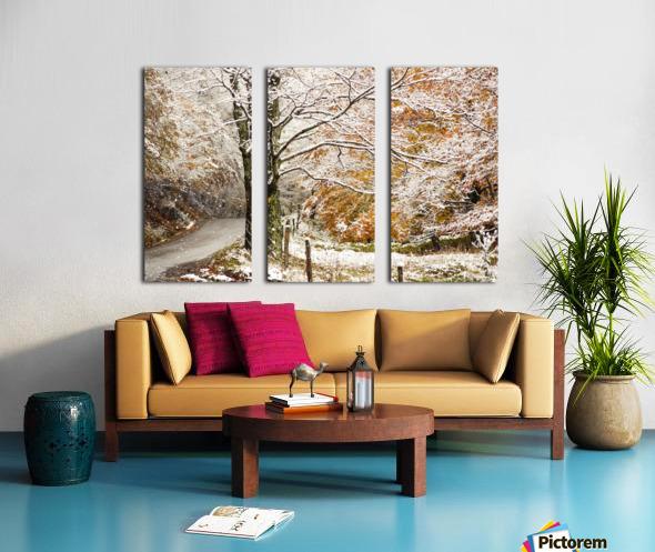 October snow Canaan Valley WVa Split Canvas print