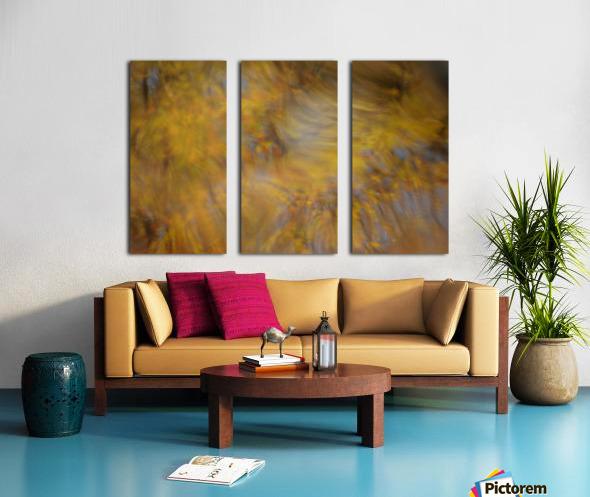 Autumnal swirls reflections 2 Split Canvas print