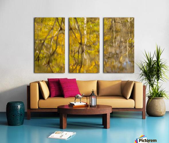 Autumnal swirls reflections Split Canvas print