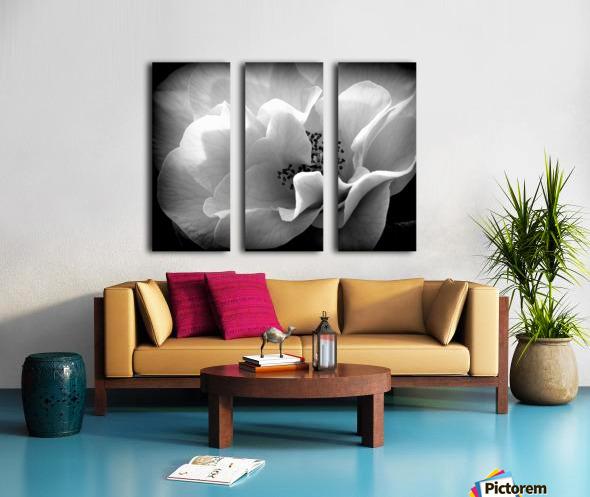Linen  Split Canvas print