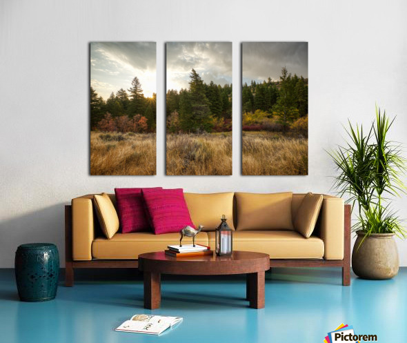 Gibson Jack Autumn Sunrise Split Canvas print
