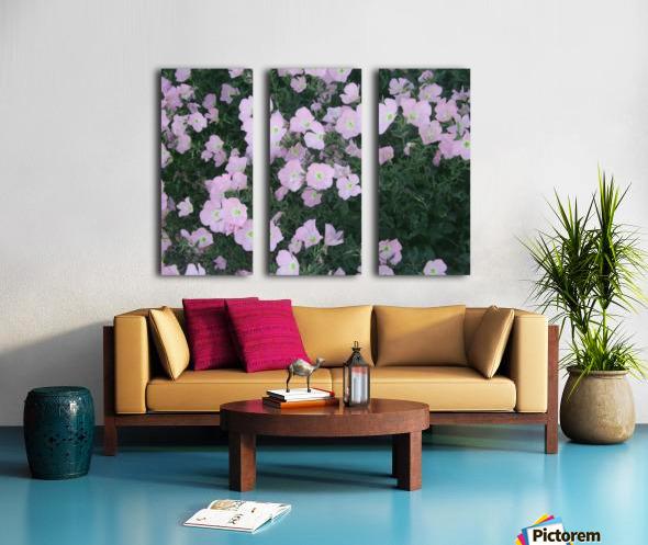 Flower Garden 2 Split Canvas print