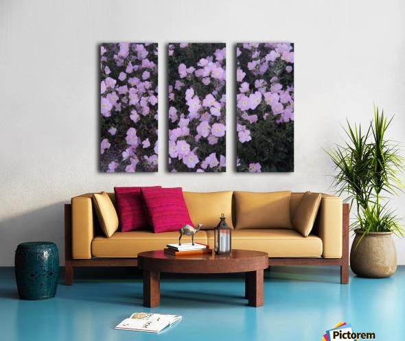 Flower Garden Split Canvas print