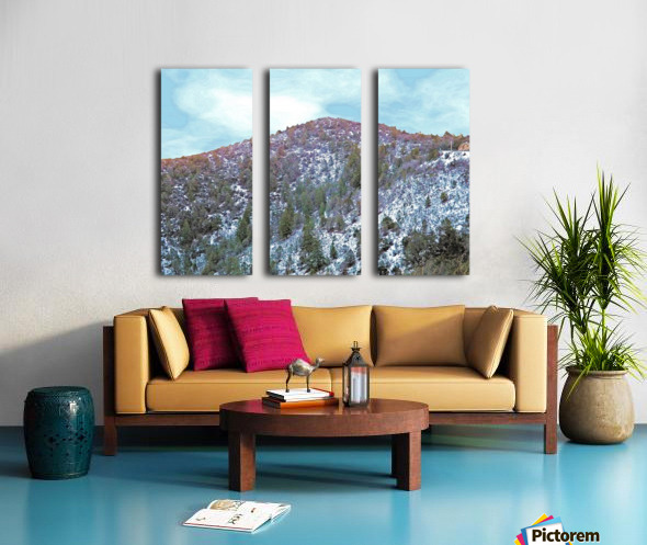 Melting Snow Split Canvas print
