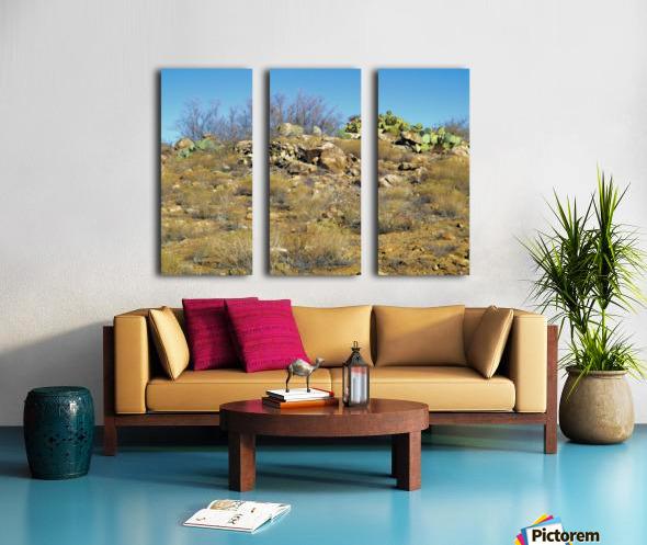 Rock n Cactus Split Canvas print