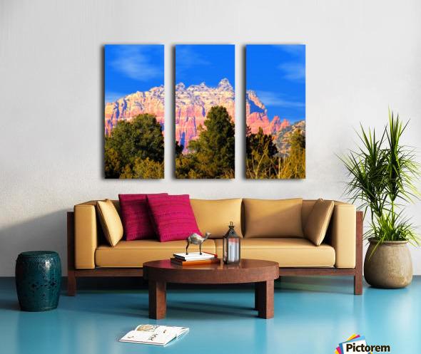 Such A View Split Canvas print