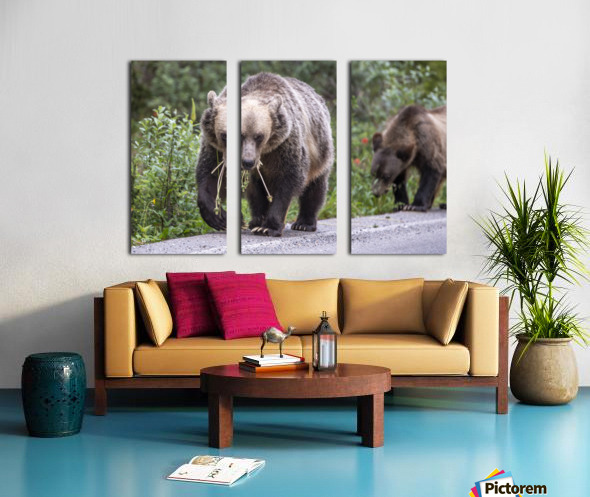 Grizzly Bear - Mouth Full Split Canvas print