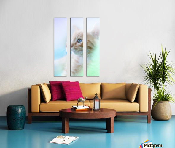 catshadow Split Canvas print