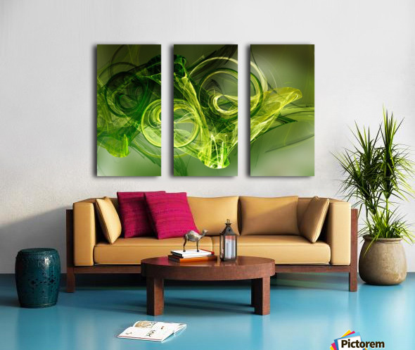 Frog Split Canvas print