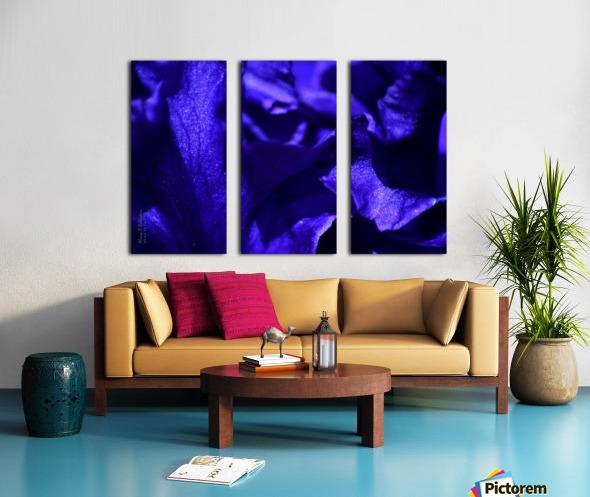 Purple Iris 1 Split Canvas print