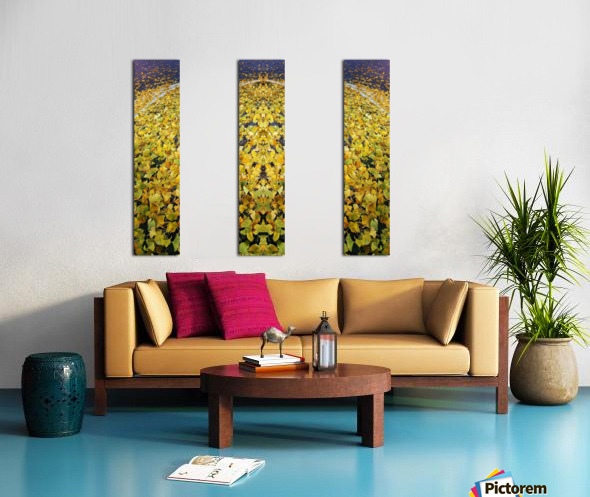 Autumn1 Split Canvas print