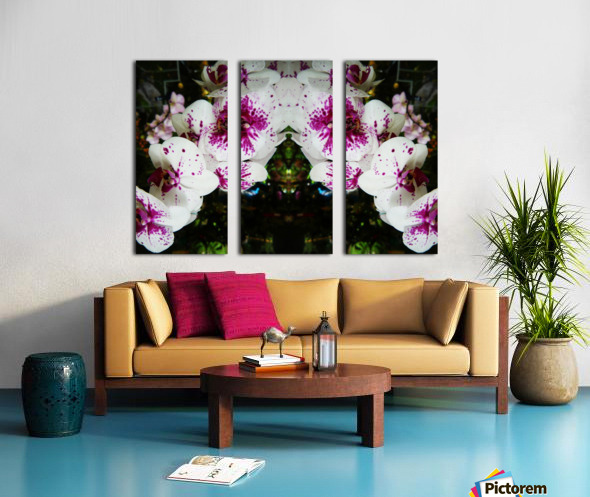 flower63 Split Canvas print