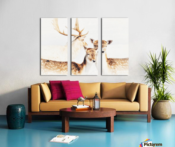 Douceurs Split Canvas print