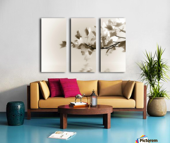 Symphony Split Canvas print
