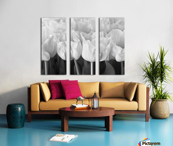 Bunch of Tulips close-up Split Canvas print