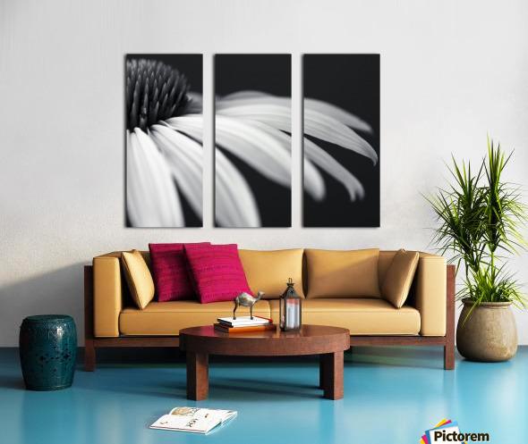 Coneflower close-up Split Canvas print