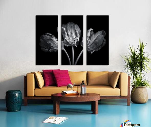 Three rococo tulips close-up Split Canvas print