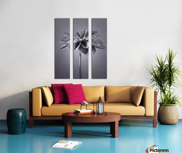 Dahlia Flower Split Canvas print